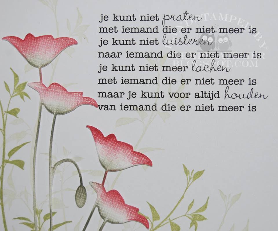 Van Schoote Leonza Wase Begrafenissen